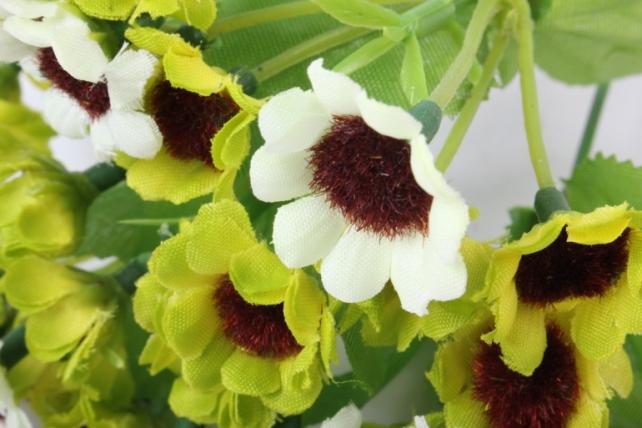 хризантема бело-салатовая букет 25см