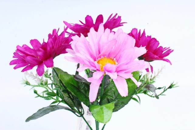 Хризантемы  пурпурные