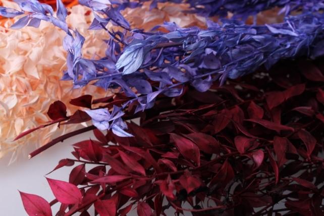 иглица иглица сухоцветы - розовый 7696