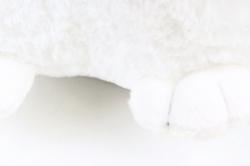 Игрушка мягкая - Хаска круглая    Д-3990/33