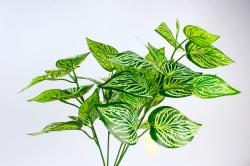 Искусственное растение - Аглаонема   Б10538
