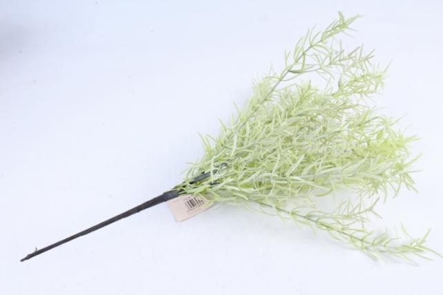 Искусственное растение - Аспарагус (силикон) K7L0253