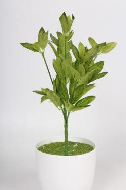 Искусственное растение - Аукуба японская Н=26 см Д10531