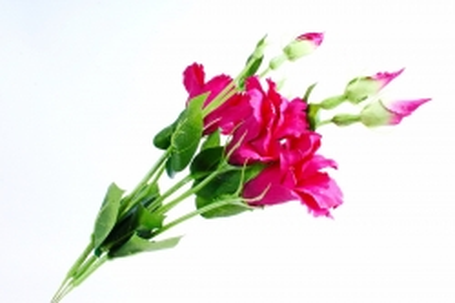 Искусственное растение - Цветок Эустомы (3 шт в уп) Пурпурный  SUN357