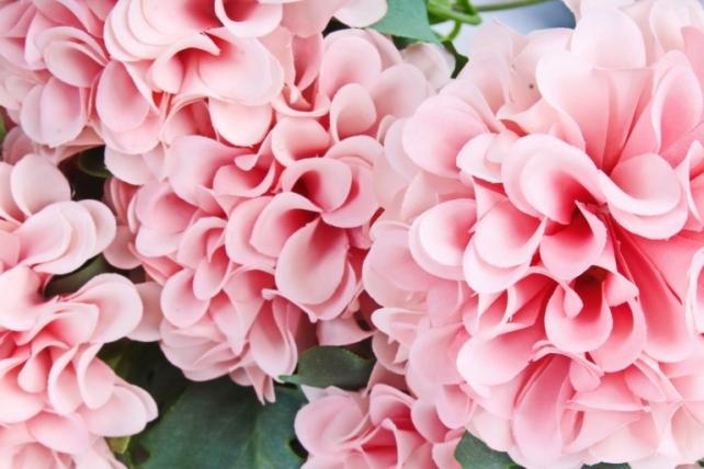 Искусственное растение - Георгины помпонные персиковый