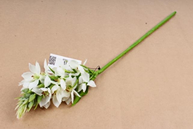 Искусственное растение - Камассия белая SUN620