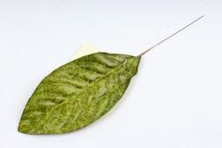 Искусственное растение - Лист Кротона зелёный  DY1-2235