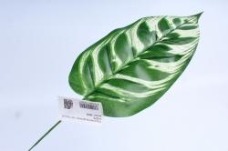 Искусственное растение - Лист Пикок  3276