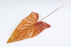 Искусственное растение - Лист тропический  охра DY1-2233