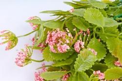 Искусственное растение - Листики декоративные коралловые