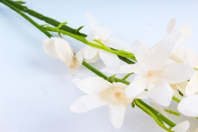 Искусственное растение - Магнолия высокая кремовая Тцк