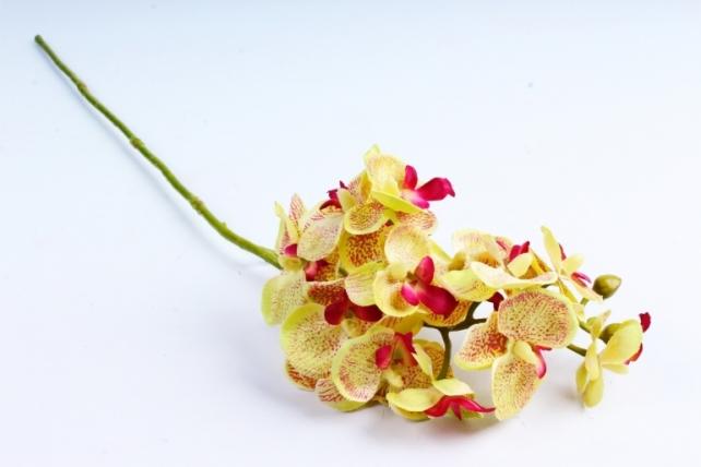 Искусственное растение - Орхидея салатовая  SUN 396