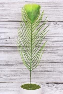 Искусственное растение - Перо павлина Н=38 см В523
