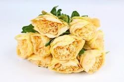 Искусственное растение - Пионы анемовидные  жёлтые