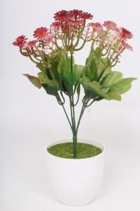 Искусственное растение - Пиретрум терракотовый h=30 см.