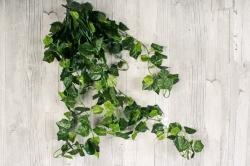 Искусственное растение - Плющ 1 м