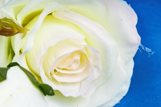 Искусственное растение - Роза бело-розовая  XY2
