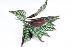 Искусственное растение - Сансевиерия плетёная 11 листов  Б10842