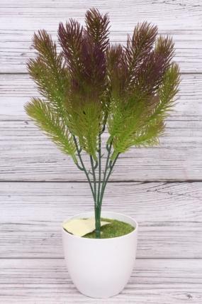 Искусственное растение - Сосна горная фиолетовая Н=35 см Б10913