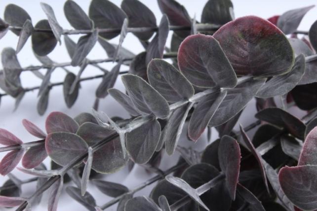 Искусственное растение - Ветка Эвкалипта 40 см бордо TIK047