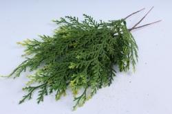 Искусственное растение - Веточка Туи  (3 шт в уп) 1802