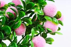 Искусственное растение - Ягодки бархатные розовые
