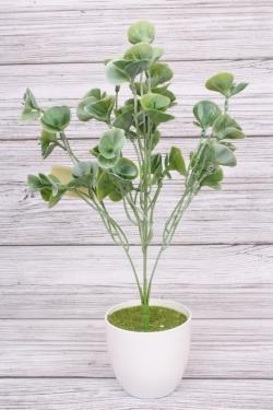 Искусственное растение - Зелень китайская салатовая. 40см.