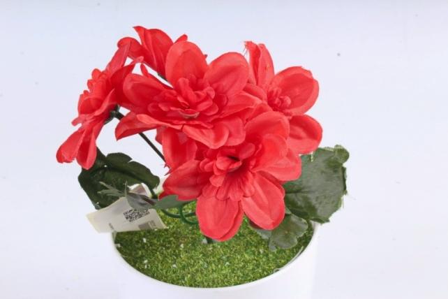 Искусственное растение -  Анемоны яркие красные