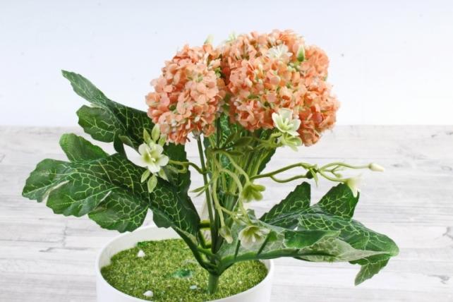 Искусственное растение -  Астранция персиковая