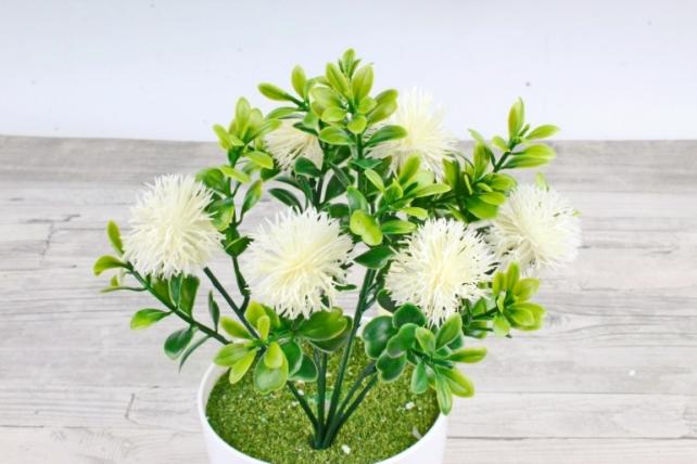 Искусственное растение -  Чертополох в самшите белый