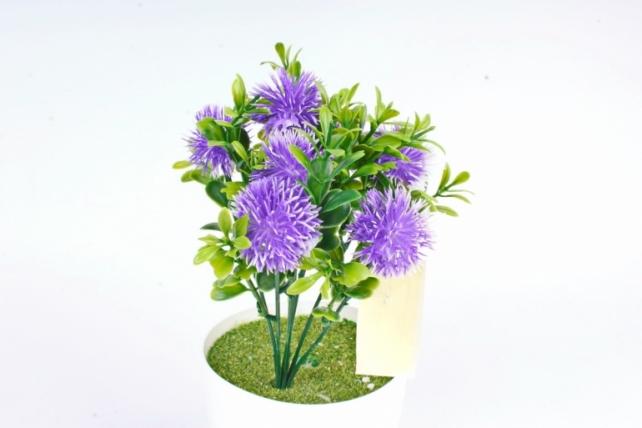 Искусственное растение -  Чертополох в самшите фиолетовый