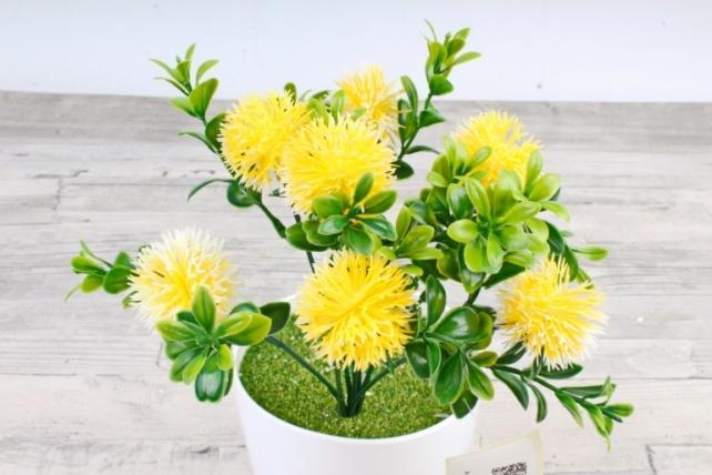 Искусственное растение -  Чертополох в самшите жёлтый