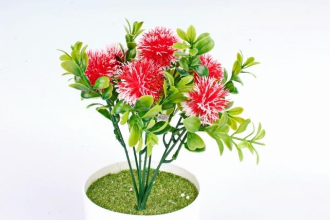 Искусственное растение -  Чертополох в самшите красный
