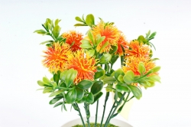 Искусственное растение -  Чертополох в самшите оранжевый