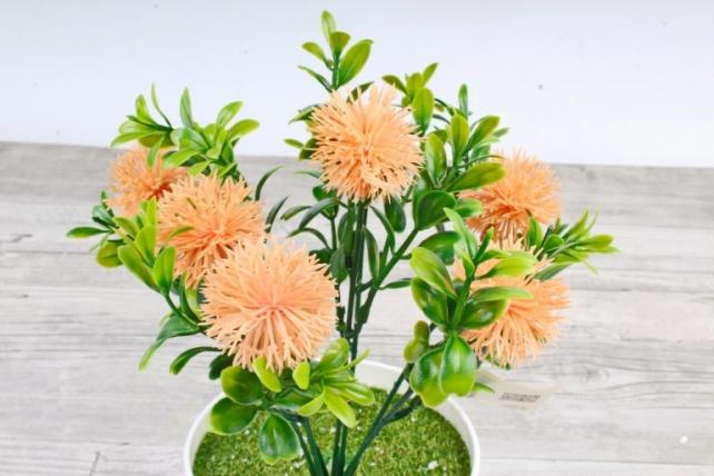 Искусственное растение -  Чертополох в самшите персиковый