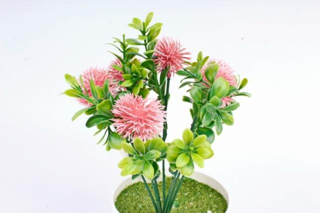 Искусственное растение -  Чертополох в самшите розовый