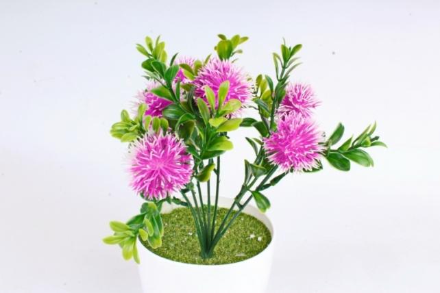 Искусственное растение -  Чертополох в самшите сиреневый