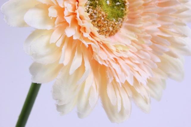 искусственное растение - цветок герберы 60 см персик sun348