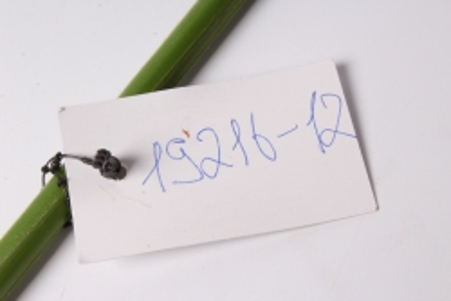 искусственное растение - цветок герберы 60 см салатовый   sun348