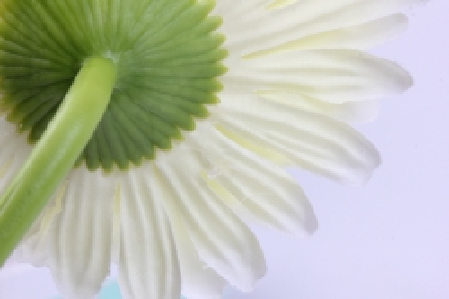 искусственное растение - цветок герберы 60 см шампань sun348