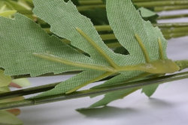 искусственное растение - цветок хризантемы (6 шт в уп) 55 см салатовый sun469