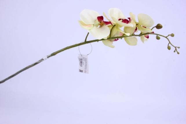 искусственное растение - цветок орхидеи 85 см малиново-лимонная sun437
