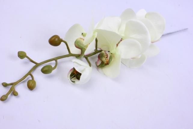 Искусственное растение - Цветок Орхидеи 85 см Салатовая SUN437