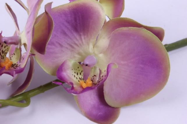 искусственное растение - цветок орхидеи 85 см сиренево-зелёная sun437