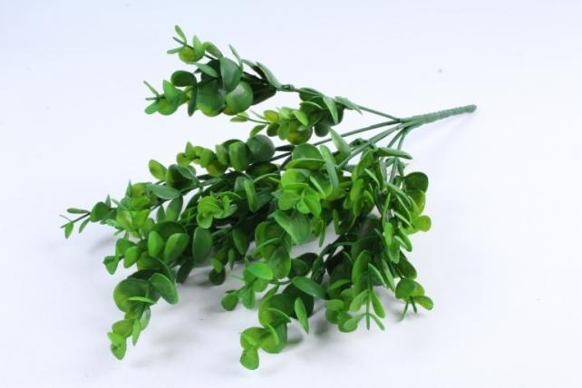 Искусственное растение -  Эвкалипт Цинерея зелёный Б9887
