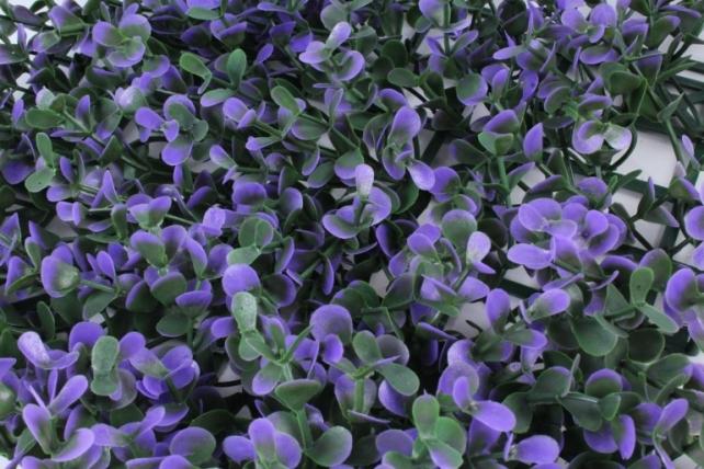 Искусственное растение -  Газон самшит фиолетовый Д10176