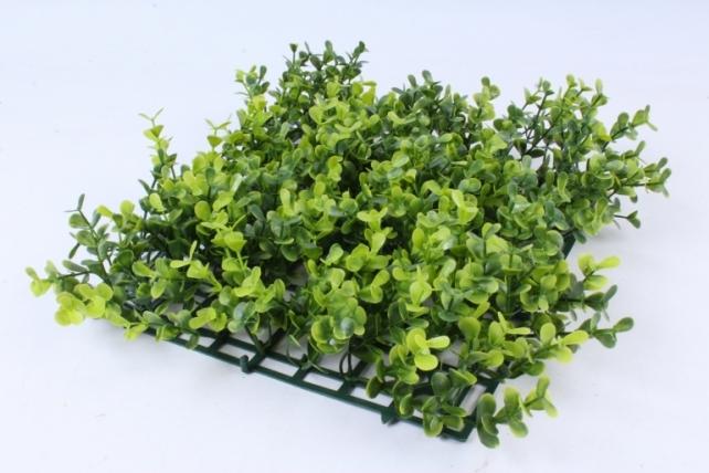 Искусственное растение -  Газон самшит зелёный Д10176