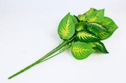 Искусственное растение -  Гипоэстес   Б10537