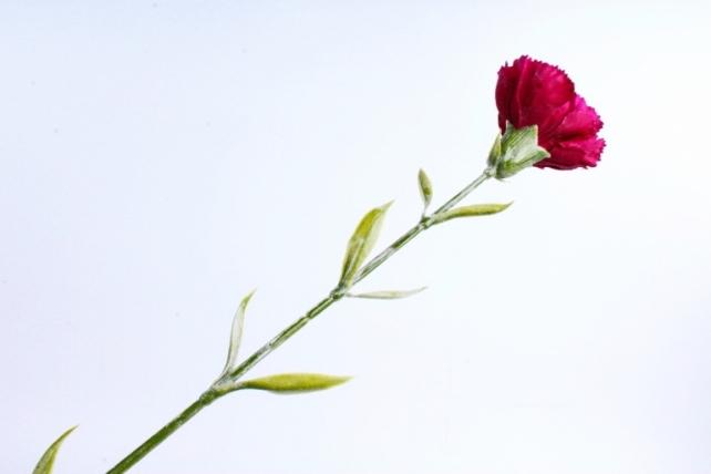 Искусственное растение -  Гвоздика бордо  SUN005