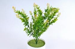 Искусственное растение -  Иглица с жёлтыми ягодками